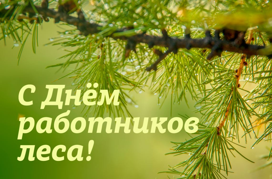 прелесть поздравление руководителя с днем работников леса тобой