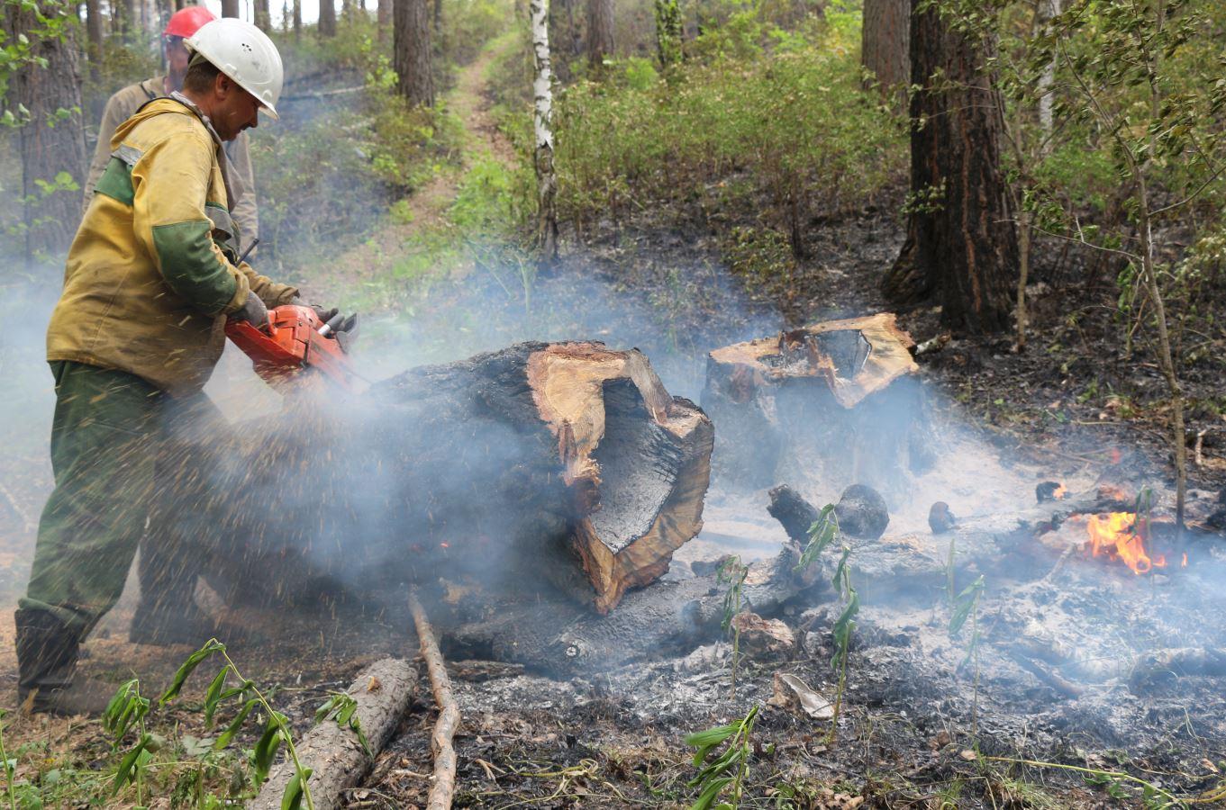 Правительством РФ утверждены нормативы обеспеченности регионов лесопожарными формированиями, пожарной техникой и оборудованием