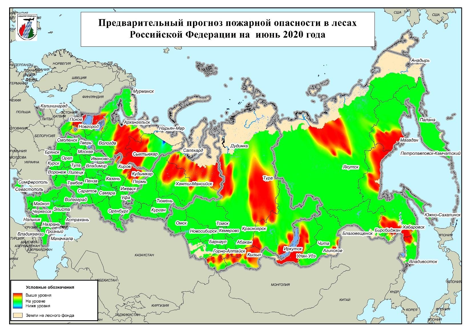 сколько процентов россии занимают леса